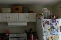 Before- Fridge view 2
