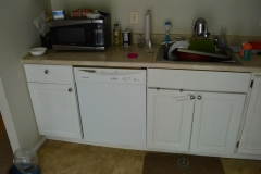 Before base cabinet view dishwasher and sink side